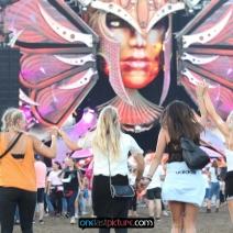 photo_airbeat_one_festival_destination_india_onelastpicture.com23