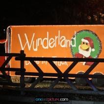 photo_winter_wunderland_drive_in_onelastpicture.com9